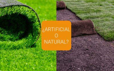 El césped perfecto:  ¿césped natural o artificial?